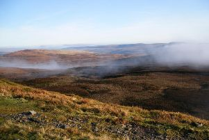 The vast majority of Yorkshire's 70,000 hectares of peatland is badly damaged, according to Yorkshire Wildlife Trust. Picture by Gordon Haycock/ Yorkshire Wildlife Trust.