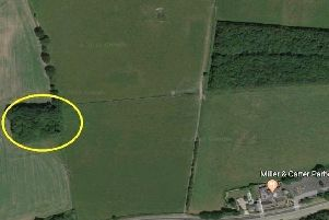 The area where the body was found. Picture Google Maps