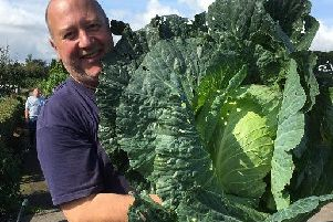 Darren Wrudd with his gigantic cabbage