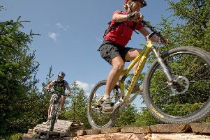 Mountain bikers in action