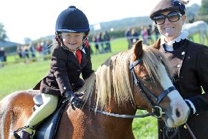The annual Southwell Ploughing Match and Show provides fun for all ages.