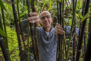 Date: 23rd April 2018.'Picture James Hardisty.'Nick Wilson, of Gledhow Wood Avenue, Roundhay, Leeds, in his Jungle Garden, which is opened to the public.