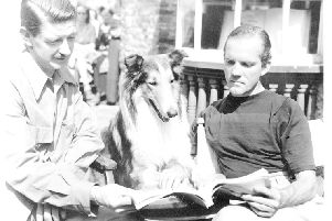 Eric Knight (left) and director Fred Wilcox examine the script for Lassie Come Home
