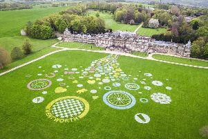 Last years winning Confetti Land Art at Wentworth Woodhouse