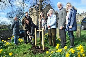 The Seafood Pub Companys Nina Finn plants the first sapling for Champion Bowlands Landmark Trees initiative outside the Assheton Arms in Downham watched by (from left to right): Sandra Silk, Paul Reynolds, Issie Kenyon, Robin Gray, Lady Clitheroe, Mike Pugh and Hetty Byrne.