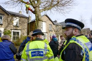 One of the Sheffield tree protests.
