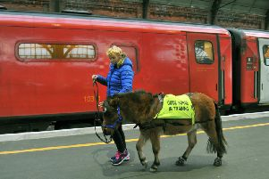 Katy Smith from Northallerton training Digby the Guide Horse at Darlington railway station as Digby walks by a London Kings Cross bound train.