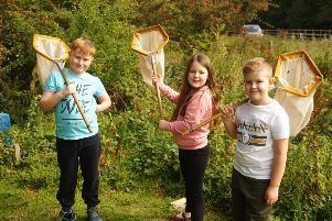Youngsters taking part in a Nature Watch at West Boldon Lodge