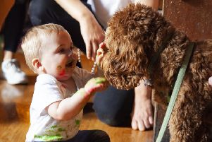 Play party: Pet therapy dog Jeffrey entertains children during the event at Revolution De Cuba in Leeds.