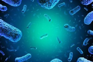 Listeria is a type of bacteria which infects humans and some animals through contaminated food.