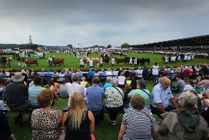 The second day of the Great Yorkshire Show