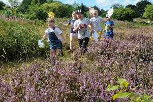 Children run through the meadow looking for butterflies