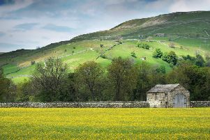 The deadline for entries for The Yorkshire Post's 2019 Rural Awards is midnight on Wednesday, October 10. Picture by Bruce Rollinson.