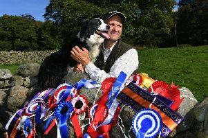 Andrew Fisher from Low Laithe, near Pately Bridge. Pictured with his sheepdog Bess and his impressive haul of rosettes from this year's shows. Picture by Jonathan Gawthorpe.