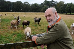John Fozzard with his commercial flock of sheep at Whitley near Selby. Picture by Tony Johnson.