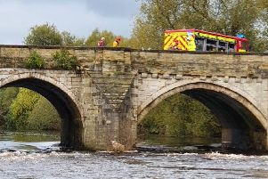 Rescue services were called to save a sheep stranded on an island in the River Ure in North Yorkshire