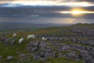 Rural Yorkshire is under threat