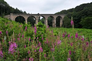 The viaduct at Nidd Gorge. Picture: Gerard Binks