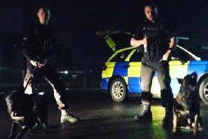 Police dogs were called in to disperse the crowd.