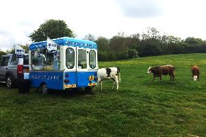 The traditional ice cream van in Burgess Ice Cream. Credit: Jonathan Gawthorpe