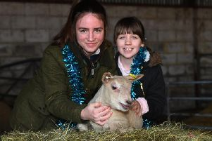 Molly and Lucy Dougherty pictured with one of the lambs.