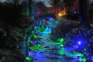 Winter Glow Christmas Lights at RHS Harlow Carr Gardens in Harrogate. Picture Tony Johnson.