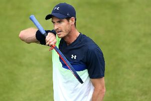 Andy Murray: Will start his latest comeback at the Brisbane International.