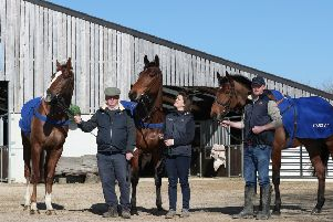 Colin Tizzard (left) with Native River, Kim Tizzard (centre) with Thistlecrack and Joe Tizzard (right) with Elegant Escape  - all three are due to line up in the Gold Cup next month.