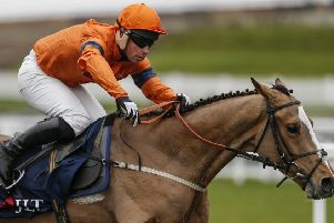 Joe Colliver still hopes to partner Sam Spinner at Cheltenham - despite being charged with drink-driving.