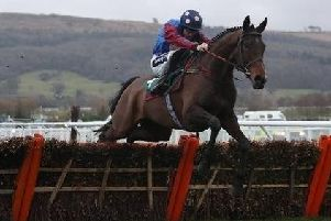 Paisley Park lines up in today's Stayers' Hurdle for owner Andrew Gemmell who has been blind since birth.