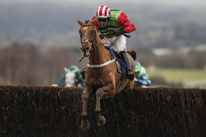 Definitly Red is on the injury sidelines after being brought down in the Gold Cup.