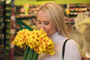Morrisons brings back the sweet scent of daffodils for Mother's Day. Pic: Rachel Kennedy