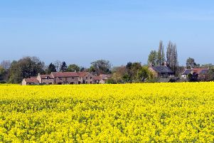 A field of rapeseed near Skirpenbeck, Yorkshire, as Britain is set for a sunny Easter bank holiday weekend, that could break national records.Photo: Press Association