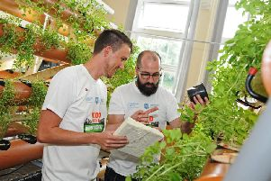 Sheffield scientists are growing food ten times faster without soil at an urban farm in Tinsley