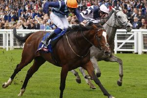 Accidental Agent and Charles Bishop will attempt to defend Royal Ascot's Queen Anne Stakes next week.