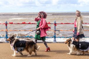 Vintage by the Sea 2019. Pooches and their owners who took part in the CancerCare Pooches parade.