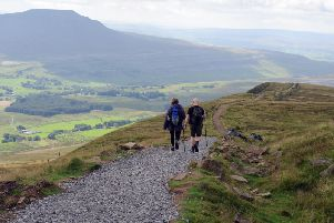 Walkers descend from the summit of Whernside on the Three Peaks footpath with Ingleborough in the distance. Picture by Tony Johnson.